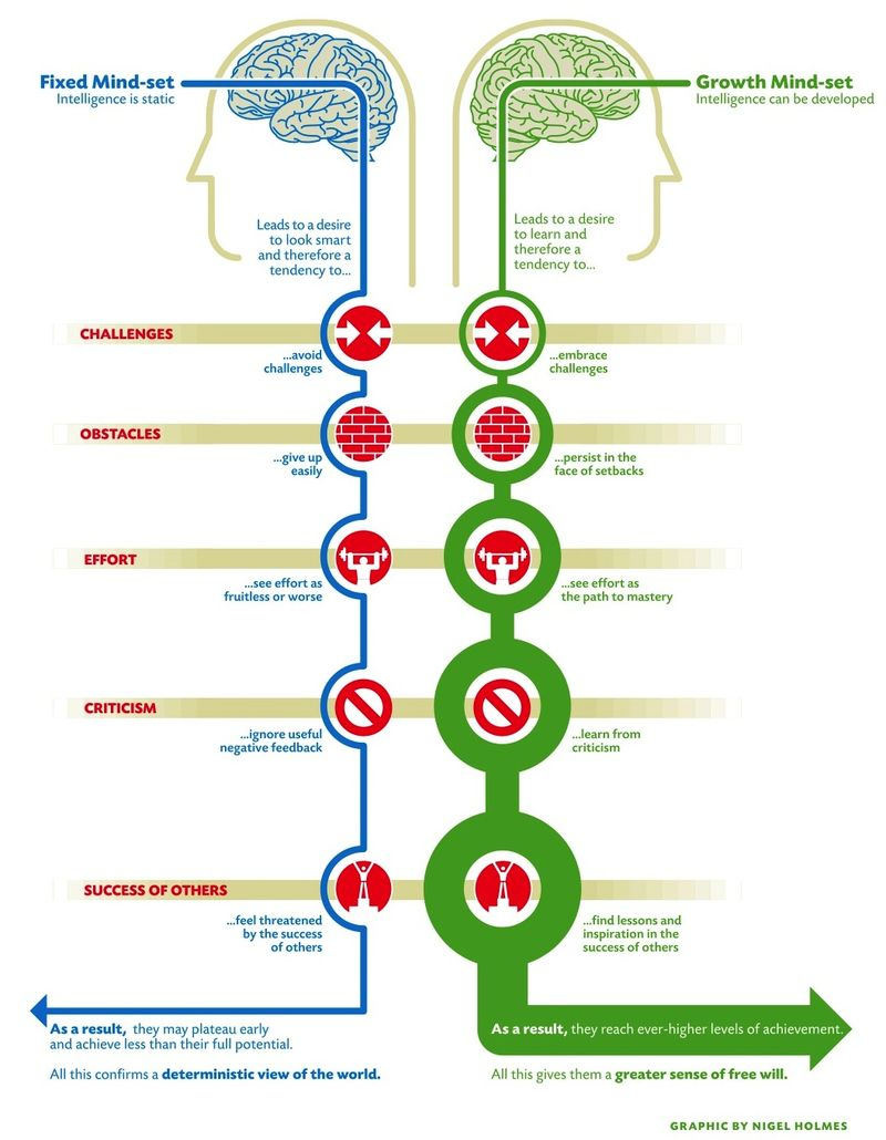 image from Mindset, by Carol Dweck, http://www.stanfordalumni.org/news/magazine/2007/marapr/images/features/dweck/dweck_mindset.pdf